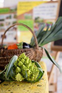 concours cuisine mirepoix photo restaurant chef ariege raphael kann_0948_R